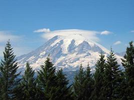 Mount Rainier con alberi di pino