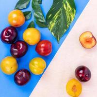 frutti di prugna colorati su sfondo colorato foto