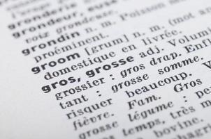 dizionario francese alla parola grasso