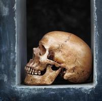 cranio di sfondo grunge