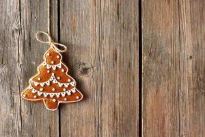biscotto di pan di zenzero fatto in casa di Natale