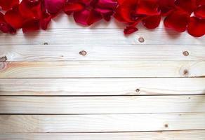 bordo di petali di rosa foto