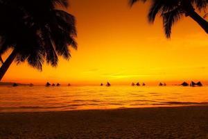 barche a vela al tramonto su un mare tropicale. foto di sagoma.