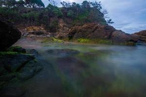 muschio verde sulla spiaggia di coolum