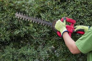 giardiniere che lavora