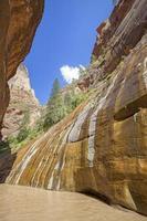 Virgin River si restringe nel Parco Nazionale di Zion, Utah, Stati Uniti d'America