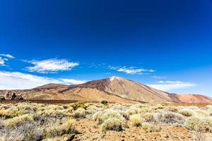 Parco Nazionale del Teide, Tenerife, Isole Canarie, Spagna foto