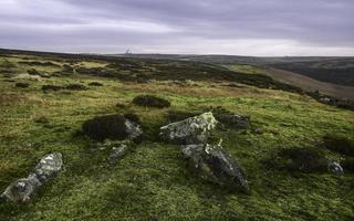 Nork York Moors all'alba, Goathland, Yorkshire, Regno Unito.