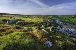 dawn on the moors, yorkshire, inghilterra, regno unito.