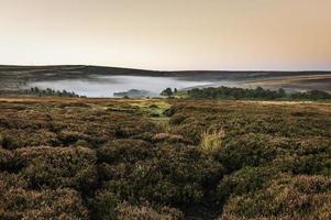 nebbia sopra le brughiere di North York, Yorkshire, Regno Unito.