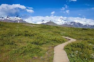 passerella in legno al parco nazionale in islanda foto