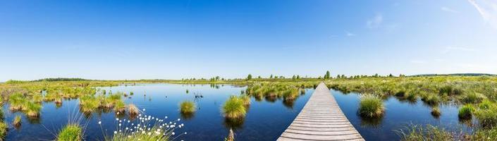 parco nazionale hautes fagnes in belgio