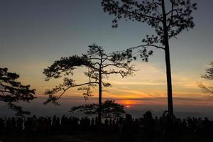 alba al parco nazionale di phukradung, thailandia