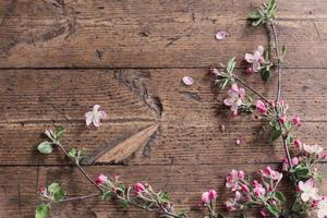 fiori di mela su fondo in legno