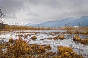vista nebbiosa del lago