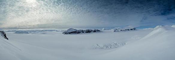 primavera artica nello spitsbergen meridionale.