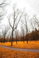 autunno piovoso