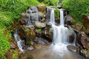 giardino naturale con cascata piccola cascata