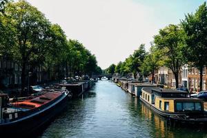 barche sul fiume vicino agli alberi