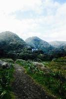 sentiero che porta alle colline
