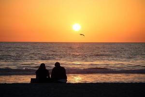 tramonto con gabbiano e coppia spiaggia di santa monica