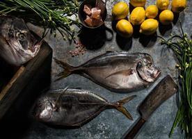 display di pesce luna foto