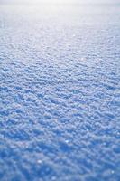 superficie della neve