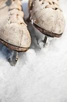 confine di pattini da ghiaccio