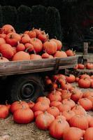 zucche di Halloween su un camion della fattoria