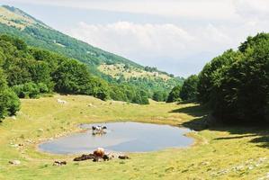 vista rurale nelle montagne del monte baldo, italia