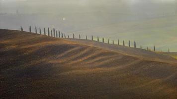 toscana - paesaggio panorama colline e prati toscana italia