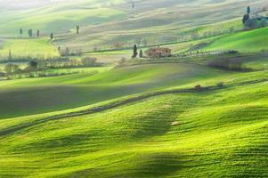 atmosfera verde primavera in un paesaggio della toscana, italia