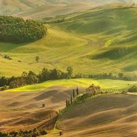 vista sulla campagna nel paesaggio toscano da Pienza, Italia