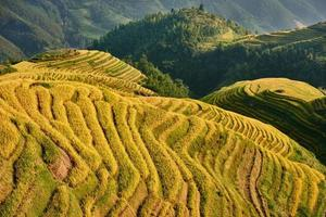 campi di riso terrazzati wengjia longji longsheng hunan cina foto