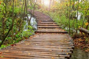 sentiero di legno nel parco nazionale di plitvice in autunno foto