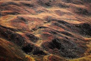 terra rossa e marrone