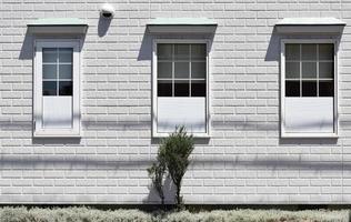 pianta verde accanto a casa dipinta di bianco
