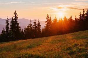 bel tramonto nelle montagne dei carpazi ucraina.