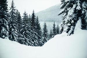 paesaggio invernale innevato