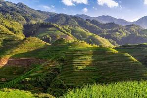 campi di riso terrazzati a longsheng, cina foto