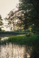 laguna naturale sotto il cielo limpido