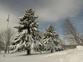 un bellissimo paesaggio invernale