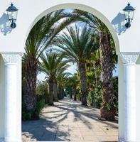 porta ad arco sul vicolo delle palme foto