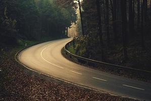 strada autunnale pericolosa