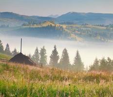 nebbiosa mattina nel villaggio di montagna