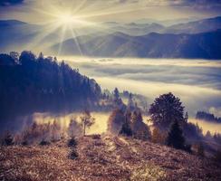 nebbiosa mattina d'autunno in montagna.
