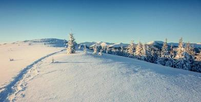 fantastico paesaggio invernale e sentieri battuti che portano nel