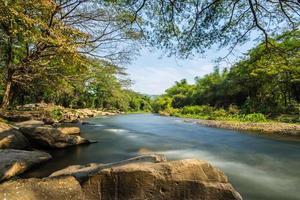 fiume nella foresta