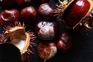 castagne spagnole o conkers
