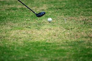 Close up della pallina da golf sul tee foto